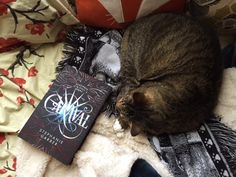 We're curling up with our Book Date of the week, CARAVAL by Stephanie Garber.
