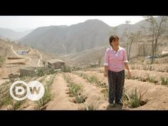 Drought in Peru - living without water | DW Documentary