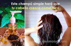 Este champú simple hará que tu cabello crezca como loco y todo el mundo estará sorprendido de su brillo y volumen | Citrus Mood Natural Makeup, Shampoo, Personal Care, How To Make, Beautiful, Beauty, Diana, Ideas, World