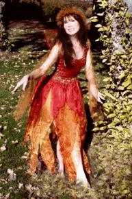 faerie dresses   AdultFairyDresses Fairy Dresses,Costumes with a Touch of Magic,Ashland ...