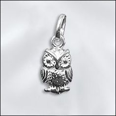 Check out our selection of new sterling silver charms!  www.wholesalejewelrysupply.com
