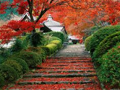 Garden staircase in Kyoto, Japan