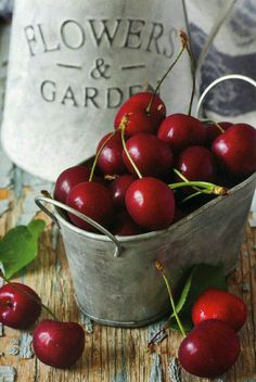 Sweet and ripe cherry. A delicious ingredient for a superlative confectionery. Find it in the Lavolio Fruit Garden Collection.Sweet and ripe cherry. A delicious ingredient for a superlative confectionery. Find it in the Lavolio Fruit Garden Collection. Cherry Fruit, Red Fruit, Fruit Art, Fruit And Veg, Fruits And Veggies, Vegetables, Fresh Cherry, Cherry Tree, Cerise Fruit