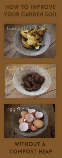 Improve Your Garden Soil Without a Compost Heap | Gardening Ideas On a Budget | How To Re-grow Food From Scraps and How To Upcycle Old Materials For Seedlings | Easy DIY Tips For Homesteading by Pioneer Settler at http://pioneersettler.com/gardening-ideas-budget/ #GardeningIdeas