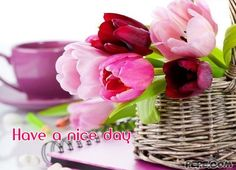 have_a_nice_day_76.jpg (600×434)