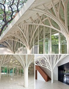 This banqueting hall in Mumbai, India looks almost elvish with its white branches, which give the impression of an avenue of snow-covered trees. The design, which was part of a renovation of historic colonial buildings in India, was partially inspired by the beautiful 'rain trees' that surround the site.