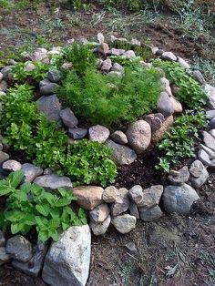 Com pedras é possível criar um canteiro em espiral, para o cultivo de algumas ervas.  Assim, poderemos sempre ter temperos fresquinhos...  Além disso, teremos o prazer de plantar e colher, observar o crescimento, estando em contato direto com a Natureza. :)