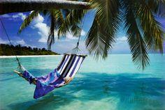 オールポスターズの「Tropical Beach (Hammock Under Tree, Huge) Art Poster Print」アートポスター