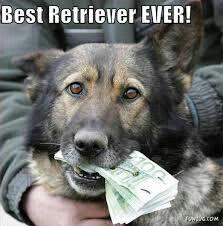 I want that dog lol