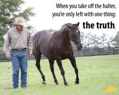 """""""When you take off the halter, you're left with one thing: the truth."""" - Pat Parelli"""