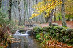 A Fall day in Gerês (Portugal)...