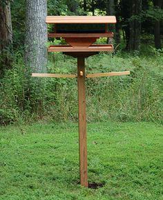 81 Best Bird Feeders And Houses Images Bird Feeders