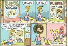 Gaturro Humor Argentino