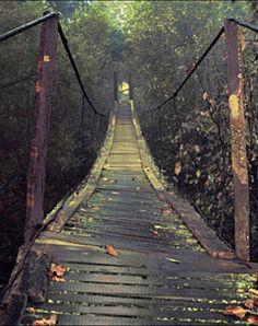 Autumn bridge Okutama Japan