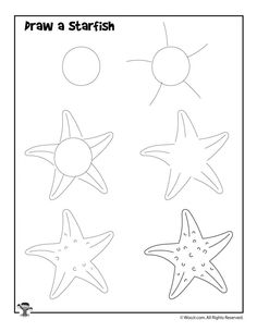 How to Draw for Kids 12 Ocean Animals to Draw Step by Step Woo Jr Kids Activities Starfish Drawing, Ocean Drawing, Starfish Art, Mermaid Drawings, Fish Drawings, Doodle Drawings, Animal Drawings, Hipster Drawings, Pencil Drawings