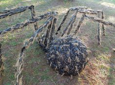 halloween giant gnarly hairy spider this is so awesome and so scary