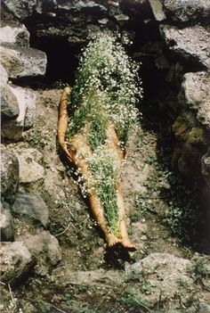 "Ana Mendieta  Ana Mendieta (18 November 1948 – 8 September 1985) was a Cuban American performance artist, sculptor, painter and video artist who known for her ""earth-body"" art work."