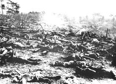The morning after the Battle of Bloody Ridge on Guadalcanal