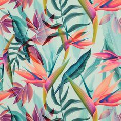 Flowery Wallpaper, Tropical Wallpaper, Print Wallpaper, Art Et Illustration, Tropical Flowers, Flower Prints, Design Art, Painting, Backgrounds