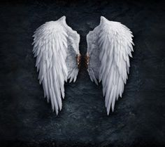 I love different kinds of wings....