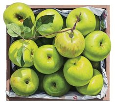 Yoon Byung Rock (contemporary Korean artist, born – fresh apples, a healthy simple dessert – oil on Korean paper Food Art Painting, Fruit Painting, Watercolor And Ink, Watercolor Paintings, Apple Farm, Still Life Drawing, Fruit Photography, Flower Branch, Color Pencil Art
