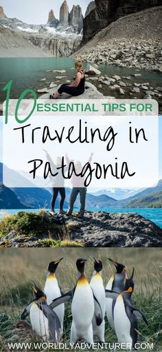 Planning at trip to Patagonia? Read my essential tips for planning like a pro and making the most of South America's most stunning region.