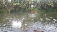 Gundabala river - Sharavati.