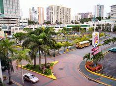 Area San Patricio, Guaynabo, Puerto Rico