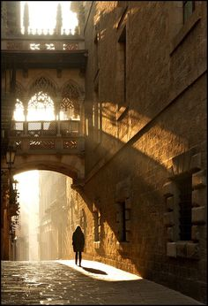 el barrio gotico