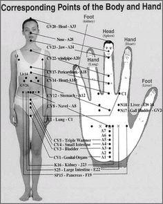 . . .FIREBERT: Reflex points, hands, feet and face. Reflexology Benefits, Reflexology Points, Acupressure Massage, Reflexology Massage, Acupuncture Points, Acupressure Points, Lymph Massage, Foot Massage, Traditional Chinese Medicine