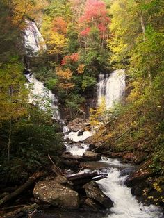Anna Ruby Falls  Helen, GA ~ a beautiful place that is not very far away from my home!  :)