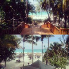 #paradise #on #earth #cuba #varadero #beach #holiday #vacation #sun #summer #caribbean #ocean by aluener