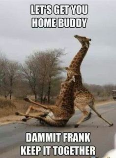 All the times I take care of drunk friends. haha!