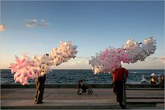 cotton candy on the corniche.