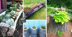 decoration-tronc-avec-fleurs