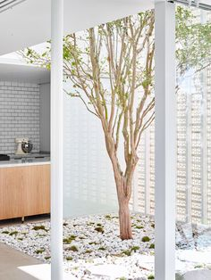 Naranga Avenue House: You Haven't Seen Breeze Blocks Like This Before Laundry Lines, Laundry Rooms, Architectural Drawings, Block Design, White Brick Houses, House Projects, Architecture Interiors, Treatment Rooms, Elegant Homes