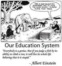 For a Fair Selection Everybody Has to Take the Same Exam Please Climb That Tree Our Education System Everybody Is a Genius but if You Judge a Fish by Its Ability to Climb a Tree It Will Live Its Whole Life Believing That It Is Stupid Albert Einstein Wisdom Quotes, True Quotes, Motivational Quotes, Funny Quotes, Funny Memes, Inspirational Quotes, Fair Quotes, Exam Quotes, Quotes Pics