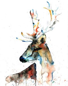 ELK Watercolour Print by Lisa Whitehouse by LisaWhitehouseArt