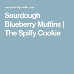 Sourdough Blueberry Muffins | The Spiffy Cookie