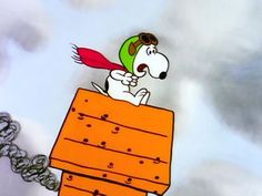Image result for snoopy crash