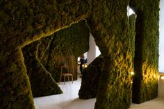 Indoor Forest at The Architecture Foundation by PUSHAK Architects