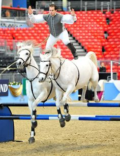 Lorenzo the flying Frenchman shows off his skills at the London International Horse Show, Olympia // Julian Makey / Rex Features