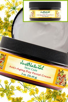 Anti-Aging Day Facial Cream | Anti-Aging - Creams | Just Nutritive