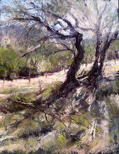 Water Canyon, Hint of Spring by Margi Lucena Pastel ~ 14 x 11