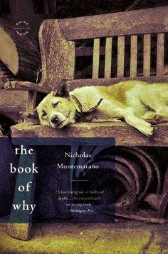 The Book of Why: A Novel by Nicholas Montemarano,http://www.amazon.com/dp/0316188468/ref=cm_sw_r_pi_dp_XqK-sb1HEF9JR8MH