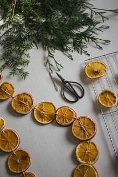 DIY Dried Orange Holiday Garland — Cashmere & Plaid - Marguerite Home Orange Christmas Tree, Christmas Tree Garland, Decoration Christmas, Christmas Oranges, Old Fashioned Christmas Decorations, All Things Christmas, Christmas Holidays, Retro Christmas, Christmas Christmas