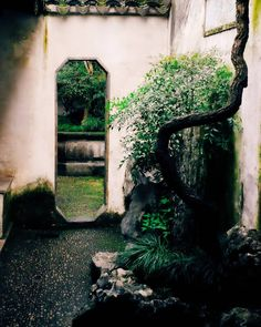 The Lingering #Garden in Suzhou is ingenious in its design. Every door and window acts like a frame on a painting. Amazingly these openings show a different picture depending on where you are standing in the garden.