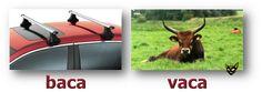 Zarampagalegando: Parellas imposibles. Baca/Vaca