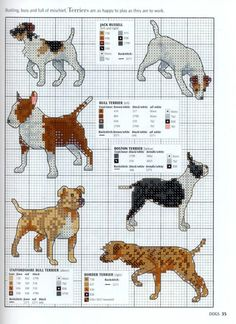 Gallery.ru / Фото #33 - Picture Your Pet in Cross Stitch - patrizia61