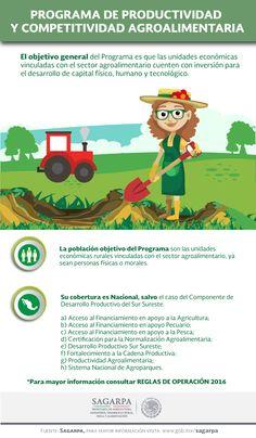 El objetivo general del Programa es que las unidades económicas vinculadas con el sector agroalimentario cuenten con inversión para el desarrollo de capital físico, humano y tecnológico. SAGARPA SAGARPAMX
